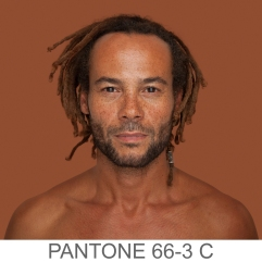 humanae+66-3+C+e